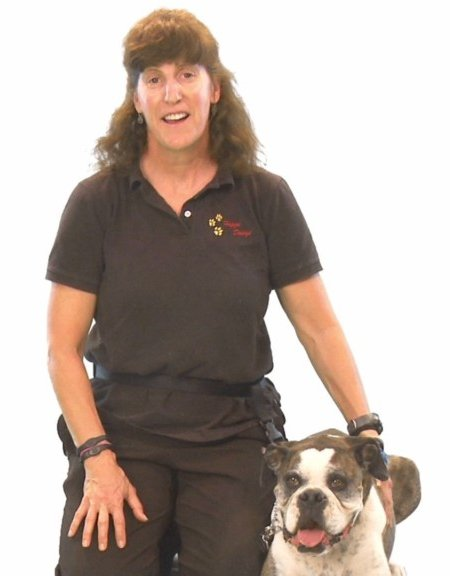 Photo of Patty Malnick, professional dog trainer and dog behavior modification consultant.